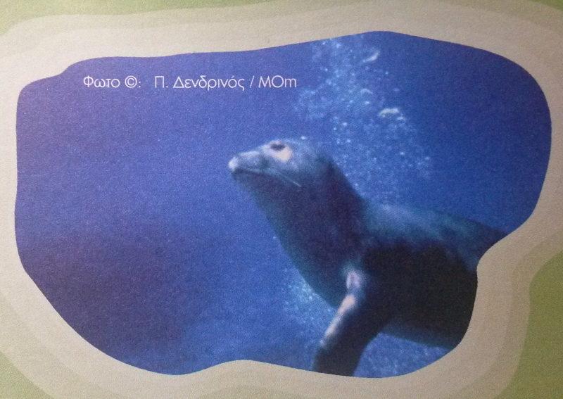 Národní mořský park Alonnisos